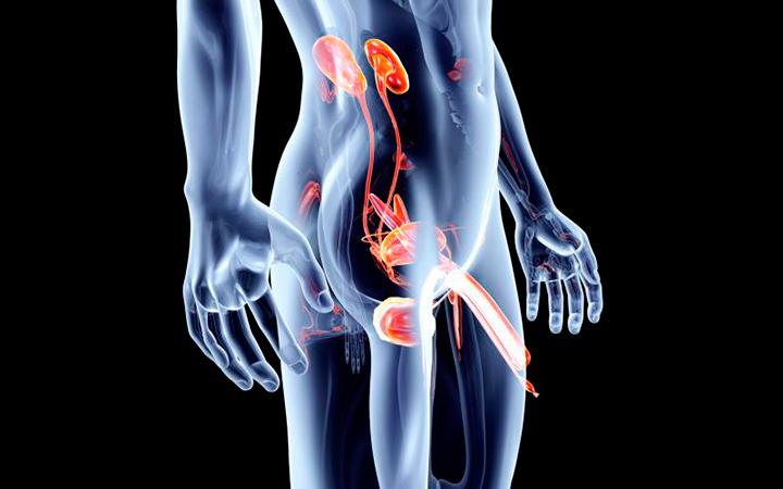 Лечение эпидидимита, причины и симптомы заболевания