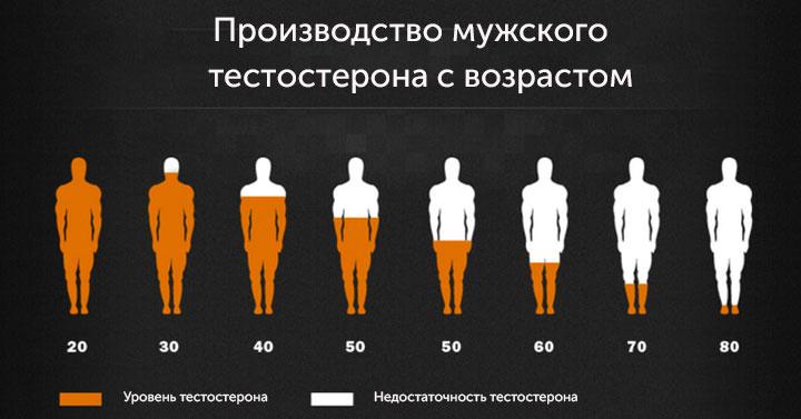 Производство тестостерона с возрастом