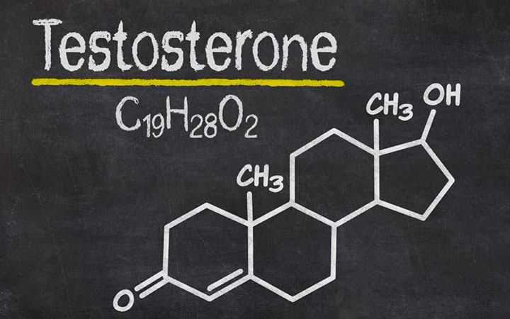 Мужской гормон - тестостерон