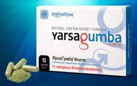 Препарат Ярсагумба